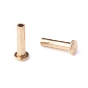 0.2cm Dia. 0.6cm Long Brass Rivet