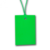 100 x Green Stringed Card Clothing Tags 70mm x 45mm