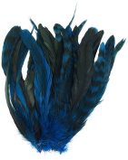 Zucker Feather Products BCCCL8-10--DKT Chinchilla Rooster Coque Tails