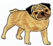 Pug Dog Animal Sew-on Iron-on Patches Embroidered Applique