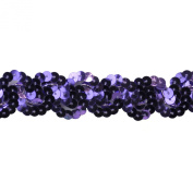 Sequin Trim 2.5cm Wide Polyester Non Stretch Sequin Trim Rolls for Arts and Crafts, 10-Yard, Purple