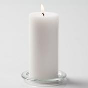 Richland® 7.6cm x 15cm Pillar Candles White Unscented Set of 12