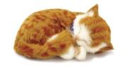 Perfect Petzzz Orange Tabby - Soft Body