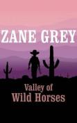 Valley of Wild Horses [Audio]