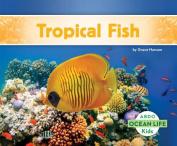 Tropical Fish (Ocean Life)