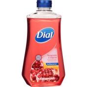 Dial Pomegranate & Tangerine Scent Liquid Hand Soap with Moisturiser Refill, 950ml