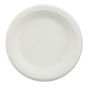 Chinet Paper Dinnerware and Plate