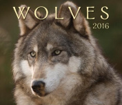 Wolves 2016 Calendar