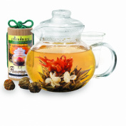 Primula Flowering Tea Gift Set