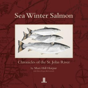 Sea Winter Salmon