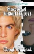 Memories of a Forgotten Love