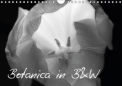 Botanica in B&W 2015