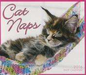 Cat Naps Calendar