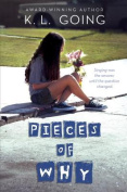 Pieces of Why