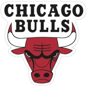 Chicago Bulls Official NBA 6.4cm Acrylic Car Magnet by Wincraft
