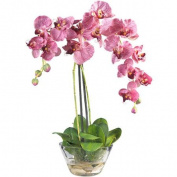 Phalaenopsis with Glass Vase Silk Flower Arrangement