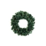 Northlight Seasonal Pre-Lit Washington Frasier Fir Artificial Christmas Wreath