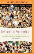 Mindful America [Audio]