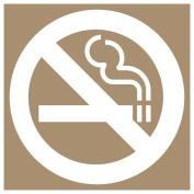 ComplianceSigns Plastic No Smoking Stencil, 20cm x 20cm