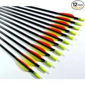 12 Shiny Black® 80cm Fibreglass Target Practise Arrows