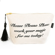 Make-up Bag 'Please Please Please work your magic for me today'