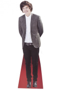 Harry Styles Celebrity Desktop Cardboard Cutout Real Stand Up