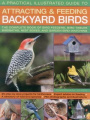 A Practical Illustrated Guide to Attracting and Feeding Backyard Birds