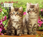 For the Love of Kittens