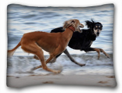 Decorative Standard Pillow Case Animals Dogs run sea 50cm *70cm One Side