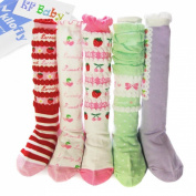 KF Baby Girl Cosy Soft Knee High Socks [Set of 5 Pairs]