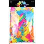 Touch of Nature Feather Value Pack Vibrant Mix for Arts and Craft, 70gm