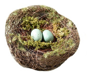Lillian Rose RA600 Moss Bird Nest Ring Holder