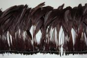 1 Dozen Striped BURNT COQUE Feather Fringe - BROWN