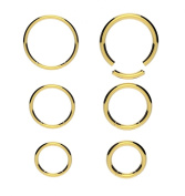 Surgical Steel GOLD Segment Ring Lip Nose Eyebrow Belly Nipple Ear