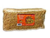 FloraCraft Straw Bale, 23cm by 20cm by 50cm , Natural