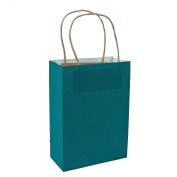 Turquoise Medium Kraft Paper Bags (12 Pack) Craft