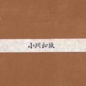 Ogawa(hosokawa) Washi Single Colour Paper 25cm(9.84 In), No.22 Ocher, 50sheets