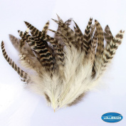 20 Pcs Natural Brown Goose Feather with White Grey Stripes