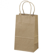 "13cm x 8.3cm x 8"" - 100 Pcs - Brown Kraft Paper Bags, Shopping, Mechandise, Party, Gift Bags"