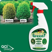 Get It Green-Repairs Brown Spots on Shrubs