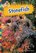 Stonefish (Poisonous Animals)