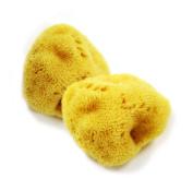 Natural Sea Silk Sponge 7.6cm - 8.9cm Baby Bath Body Shower Ball Washing Spa Ocean