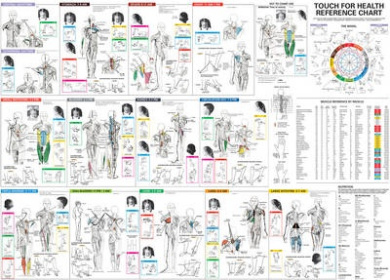 Touch for Health Reference Chart