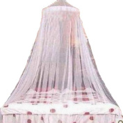 . White Elegant Lace Bed Canopy Mosquito Net
