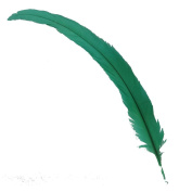 Sowder Grass Green Rooster Coque Tail Feathers 30cm - 38cm Lengh Pack of 50