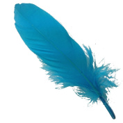 Generic Natural Turquoise Goose Feathers Clothing Accessories Pack of 100