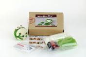 Woolbuddy Needle Felting Frog Kit