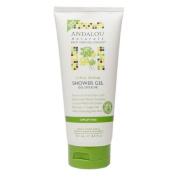 Andalou Naturals Shower Gel, Citrus Verbena 250ml