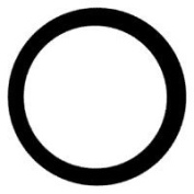 Sta-Rite Industries OK25 Replacement O-Ring For Water Filter