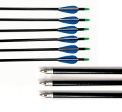 80cm Archery Fibreglass Arrows Glass Fibre Shaft 2 Blue 1 White Vanes Fletched for Compound Bow and Recurve Bow 12pcs